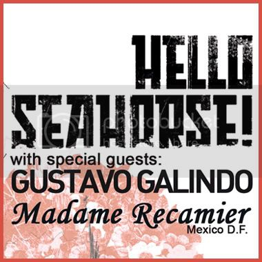 Hello Seahorse!